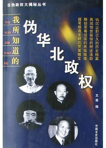 日伪政权大揭秘丛书