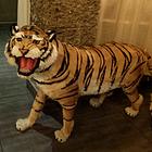 huhushengwei