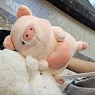 爱吃草莓的小小猪